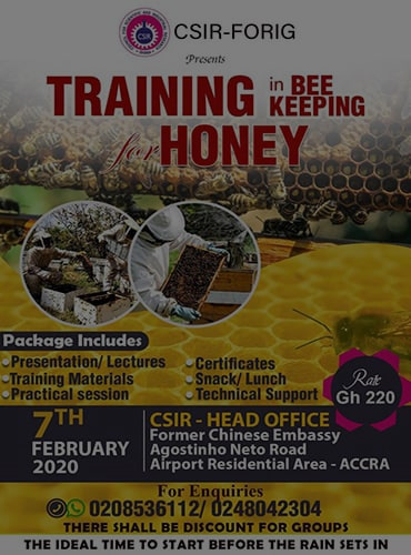 Training in Bee Keeping for Honey.