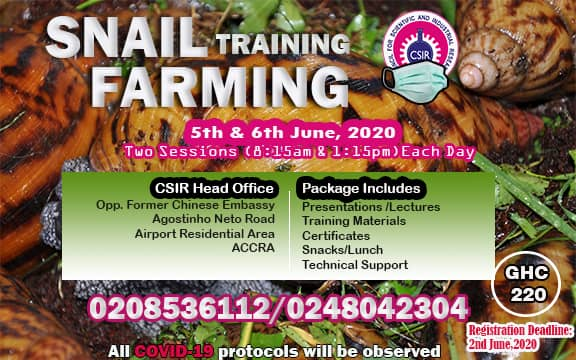 Snail Training Farming