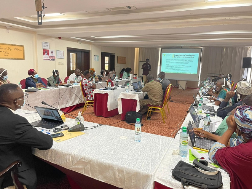 CORAF Trains CSIR and Eight West African Countries' Communication Experts on Best Practices